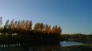 夕阳下的小河